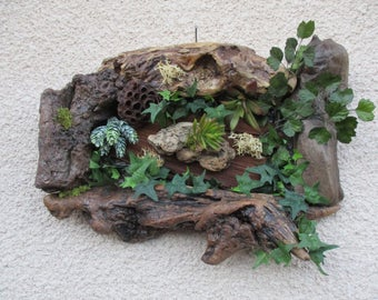 Plant table driftwood and plants