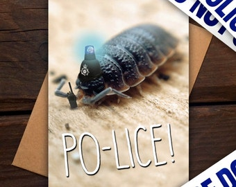 Po-lice - Greeting card - funny, humour, pun, police, insect, bug, macro, photography, siren, fuzz, old bill, animal, nature, wildlife