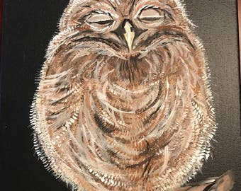 Sleepy Owl on Canvas.  50% of purchase goes to charity.