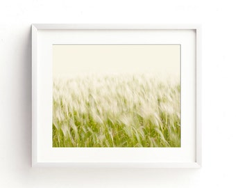 Printable photography downloads. Windswept grass in a variety of sizes and ratios. For wall art, cards, mugs, e cards, cushions, etc.