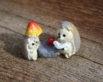 Hedgehog reading teacher thank you gift miniature fairy garden terrarium teacher