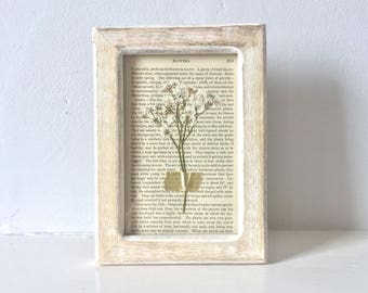framed pressed flowers on antique book page - whitewash