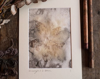 Eucalyptus & Beech leaf eco print on Handmade paper. Ready to frame in A4. OOAK