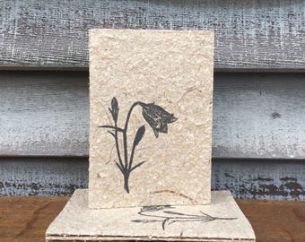 Hand Bound Journal HAREBELL Covered with Handmade Paper