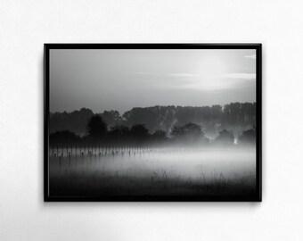 mystic landscape, mist fog and haze near Leipzig, Photoprint, Art, Printart - Poster, Acrylic, PVC foamboard, canvas print