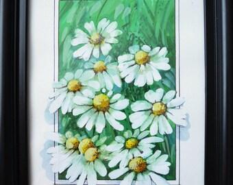 Camomiles /  Watercolor, tempera Painting