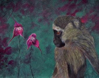 Original acrylic painting painting on paper 30 x 40 monkey Draculasimia Monkeyorchid