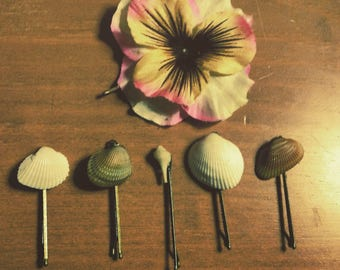 Shell hair pins