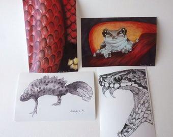 Set of 4 illustrations