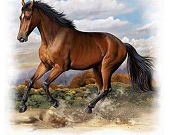 American Quarter Horse Cross Stitch Pattern***LOOK***