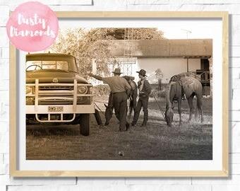 COWBOY UP > Photograph > Print > Digital Download Prints >Horse -Nature -Country Home Decor -Photo -Sepia -Black & White -Art -Photography