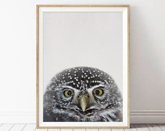 Printable Forest Owl Wall Art, Woodland Owl Print, Owl Poster Art, Rustic Nursery Decor, Owl Poster Print, Printable Woodland Nursery Decor