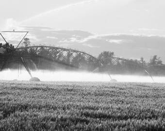 Black and White Irrigation, 8 x 10, Father's Day gift, Wedding, Country living