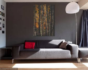 Home Decor, Masculine Decor, Office Decor, Photography, Prints, Forest Decor ,
