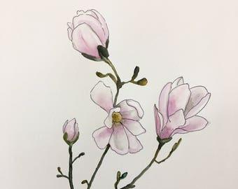 ORIGINAL Magnolias Watercolor