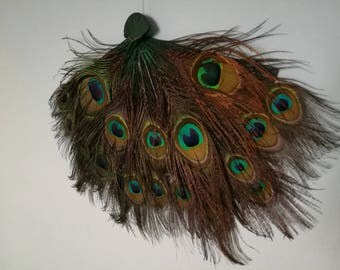 Fan hand-decorated with feathers of Peacock for belly dance