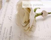 Cotton Wedding Anniversary Flower Gift for Her Wife Girlfriend Fiancee Poem Love is Patient in Vintage Cream Cotton Fabric
