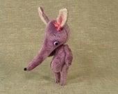 Calliope the Elephant Shrew