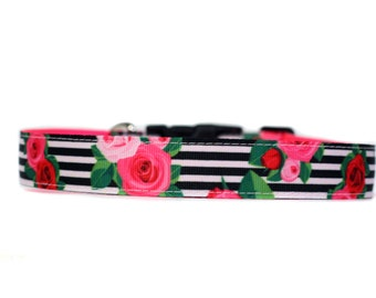1 Inch Wide Dog Collar with Adjustable Buckle or Martingale in So Betsy