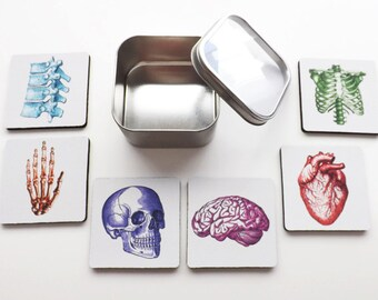Gift for Doctor Nurse Medical School Graduation Coaster anatomical heart skull brain med him her male office home decor goth novelty mug mat