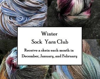 Winter Sock yarn Club Membership, Handpainted Fingering yarn 3 months free shipping, begins December