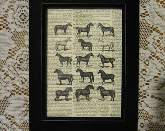 "Horses on Vintage Dictionary Book Page Print - 5"" x 7"""