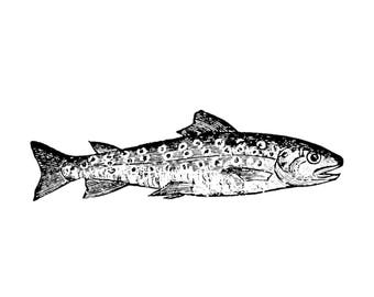 TROUT FISH Rubber Stamp~Unmounted Cling Stamp~Fishing~Father's Day~Rustic~ Lake Life (49-04)