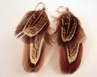 natural Pheasant Feather Earrings