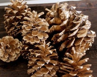 Bag of Pine Cones - Silver, Brass or Gold - Bowl Filler
