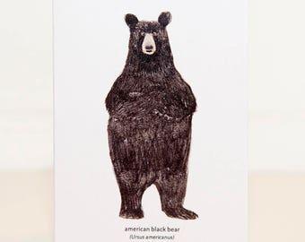 Black Bear Mini Card