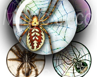 Spiders and Web   - 63  1 Inch Circle JPG images - Digital  Collage Sheet