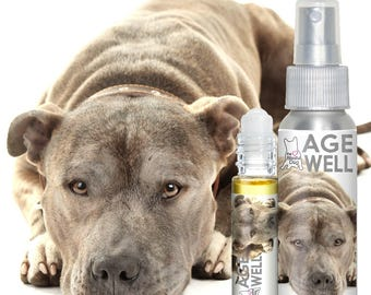 Pit Bull Terrier AGE WELL The Blissful Dog AromatherapyAll Natural Support for Your Senior Staffordshire Bull Terrier Smooths Ragged Edges