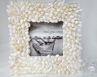 Beach Decor Seashell Frame, Nautical Shell Frame, Bullet Shell Frame, Bubble Seashell Frame, White Shell Frame, Coastal Beach House Decor