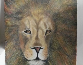 Original painting lion wildlife