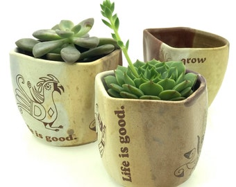 Ceramic Cups - succulant holders - mothers day gift - Set of Three -  Ceramic Tumblers - Pottery Cups - READY TO SHIP