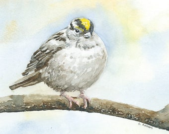 Painting of a Warbler 5 x 7 Original Watercolor