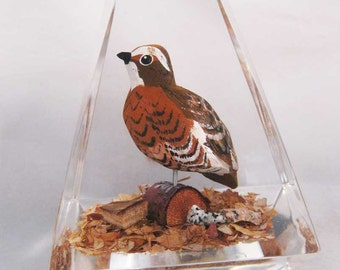 Vintage Unique Canada Hand Carved and Painted Wood Quail Bird Lucite Paperweight