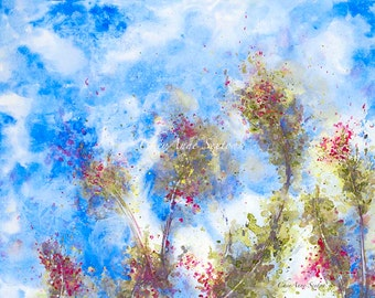 watercolor branches blowing art Pink Blossom Cobalt Blue Pink Tree Clear Bright windblown watercolor Fine Art Giclee Prints