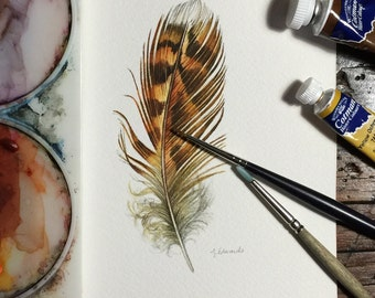 Grouse feather - Original Watercolour painting