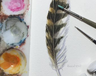 Barred Owl feather study - Original watercolour painting