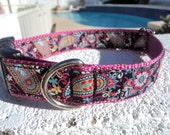 """Sale Dog Collar Fiesta Paisley 1"""" wide side release buckle - (limited ribbon no martingale collar style)"""