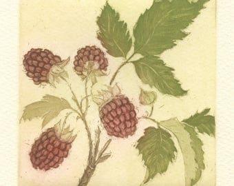 Raspberries, Original Fine Art Aquatint Etching