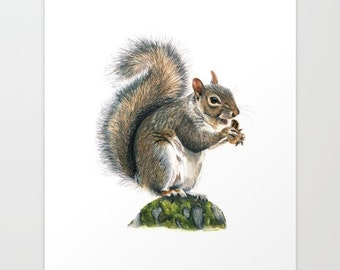 Fox Squirrel Print