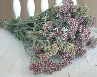 Dried FLOWERS YARROW Natural Pastel Wild YARROW Dried Flower Bunch  Wedding Country Prim Shabby Shower Floral Supplies Decor Wreath Cottage