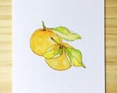 Tangerine Watercolor- Blank Card