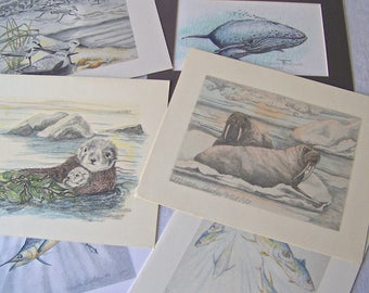 Vintage Sea Creatures Color Drawings Signed Nancy Guelzow Set of 6 Signed Dated Numbered 1990s Beach Decor Ocean Cottage