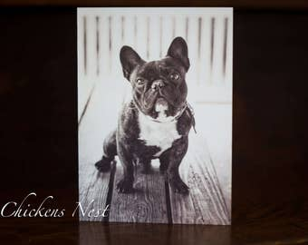 Blank Frenchie Greeting Card, Frenchie Greeting Card, French Bulldog Greeting Card, French Bulldog Card, Frenchie Card, Bulldog Card