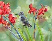 "Notecard ""Hummingbird"" by Sandi McGuire"