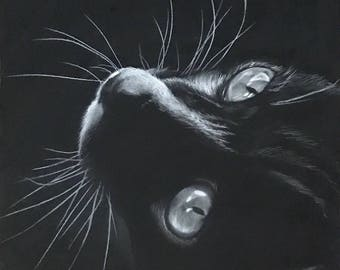 8x10 Charcoal Drawing of a Kitty and Listing for a  Print of the Original