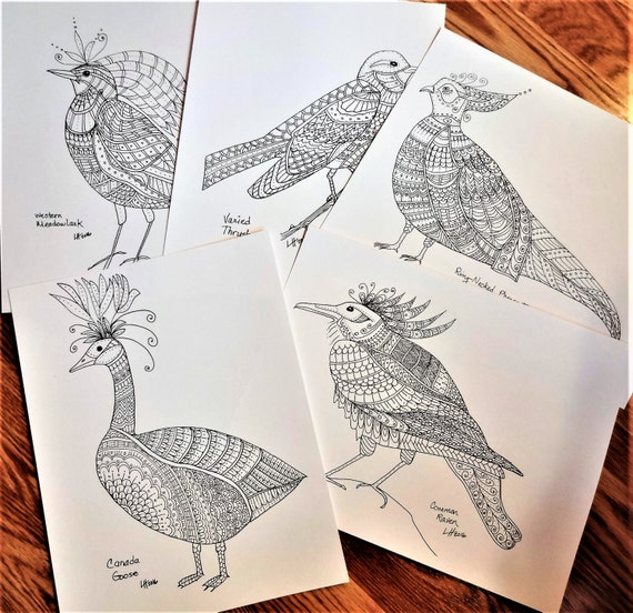 Adult Coloring Pages, Whimsical Birds Coloring Book, Fantasy Birds, Set B1, Coloring Book, Original Coloring Pages, Black and White Drawing